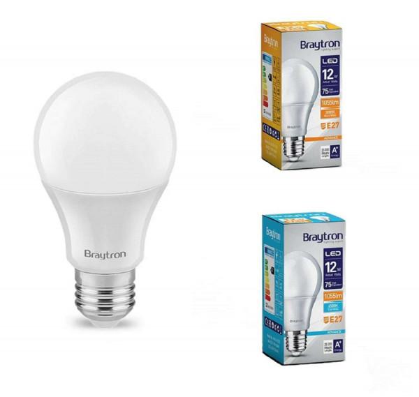 LED Birne E27 12W =75W 1055Lumen Warmweiss Kaltweiss